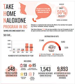 Program Infograph