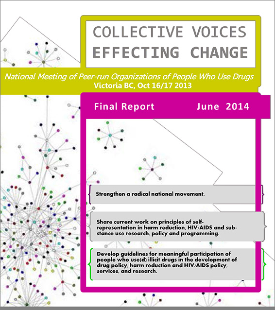 Collective Voices report